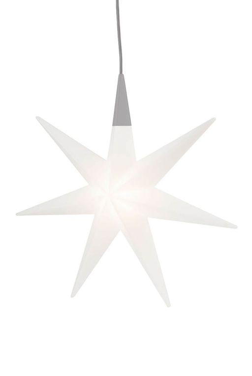 Shining Glory Stern 55cm